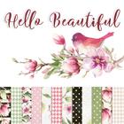 Hello Beautiful by Piatek